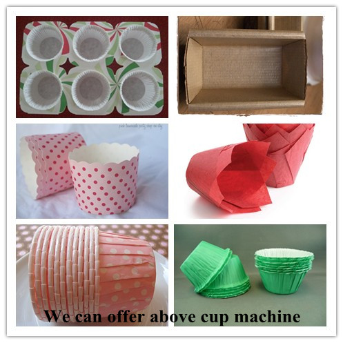 china baking cup machine